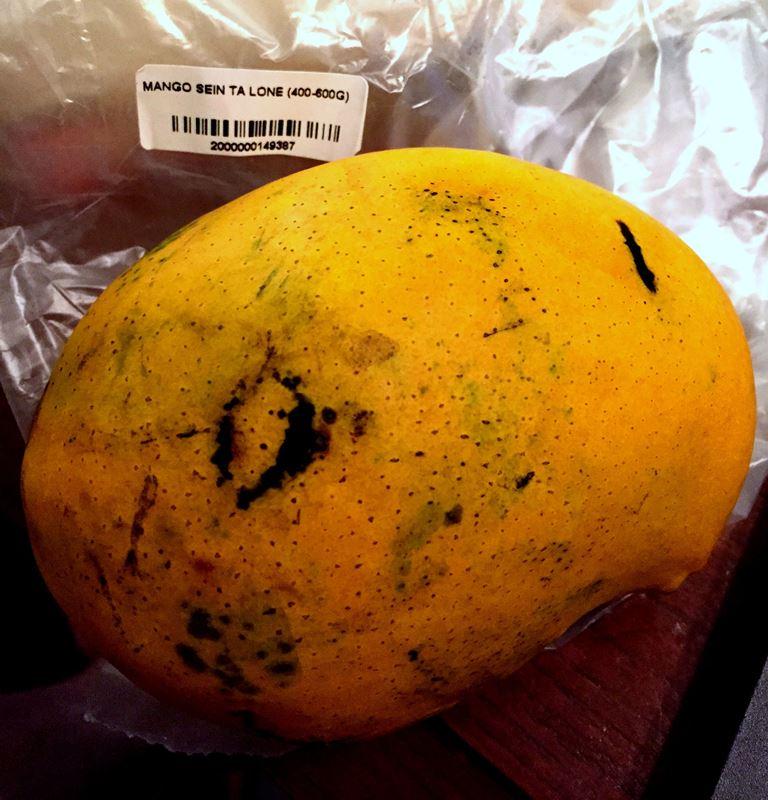 フルーツミャンマー紀行 その1 マンゴーが食べられる季節