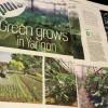 オーガニックの野菜・果物のお店「Go Green」がオープン